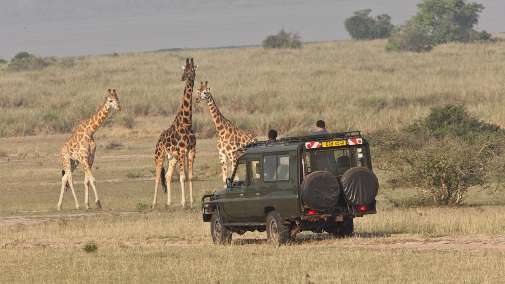 budget_safaris_uganda_packages