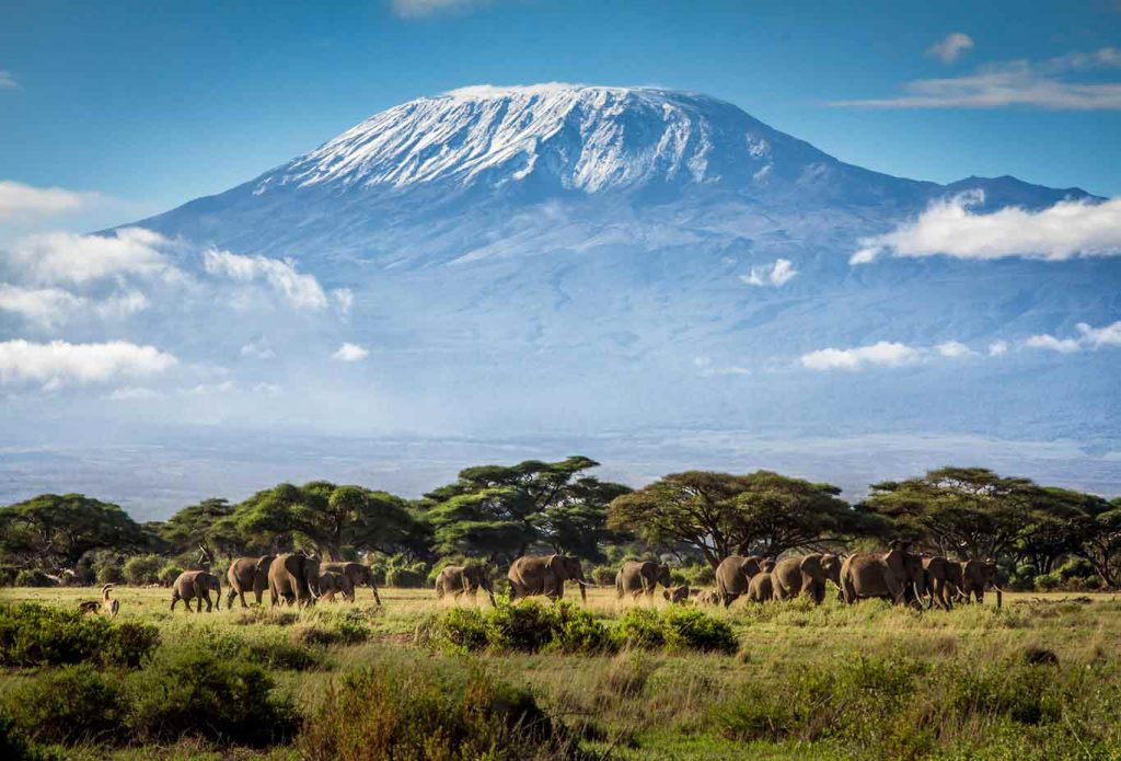 mount-kilimanjaro-national-park1